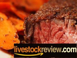 steak tingkat kematangan daging
